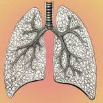 COPD Care: Basics to Partnerships